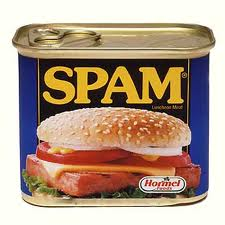 can of spam You Gotta Love SPAM
