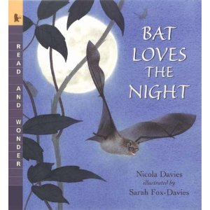 bat loves the night nicola davies My Sons Epic Third Birthday Celebrations